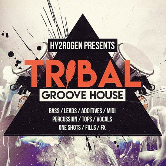 TRIBAL GROOVE HOUSE